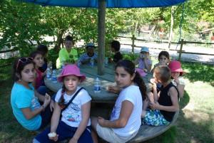 """Sortie à la """"ferme exotique de Cadaujac"""" 17 juin 2015"""